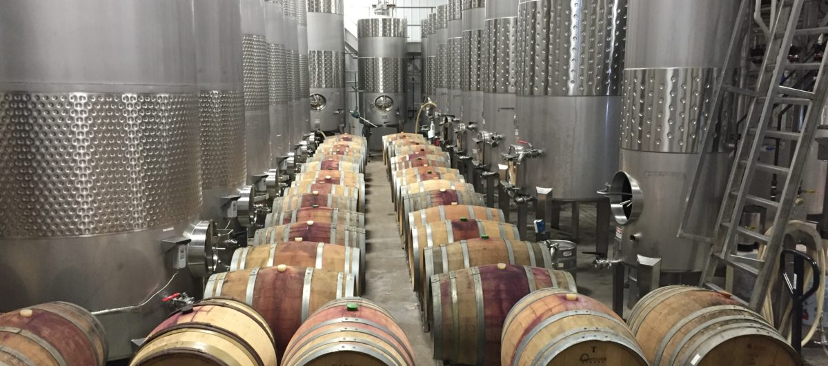 Ravines Winemaking Tank room and barrels